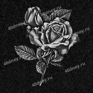 Розы для гравировки на памятник №Д129