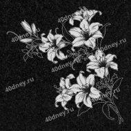 Лилии для гравировки на памятник №Д147