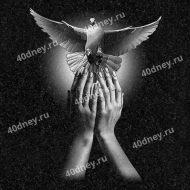 Руки, отпускающие голубя. Гравировка №Д260