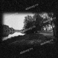 Пейзаж на памятник №Д276 (Берег и дерево)