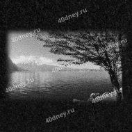 Пейзаж на памятник №Д279 (Берег озера, горы и дерево)