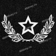 Гравировка для военных №Д355 (Звезда и лавровые ветви)