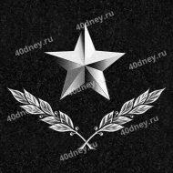 Военная гравировка для памятника №Д359 (Звезда и лавровые ветви)