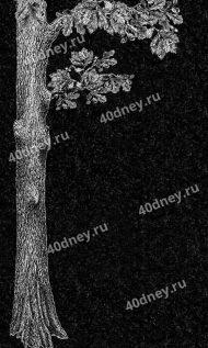 Ствол дуба с ветвями для гравировки на памятник №Д425